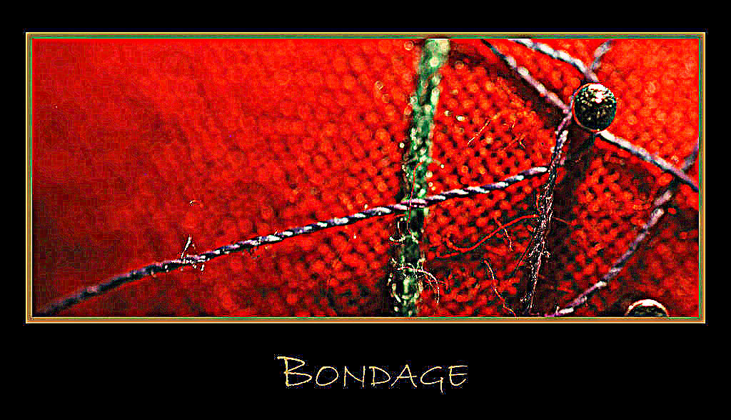 bondage_by_daxhammond in deviant